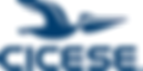 logo_cicese_2011_maxsize - Patricia Pera