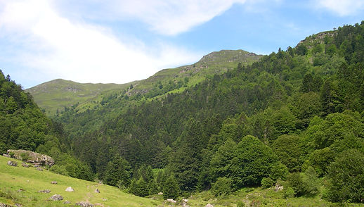 Lac d'Ourrenc (65) 008.jpg