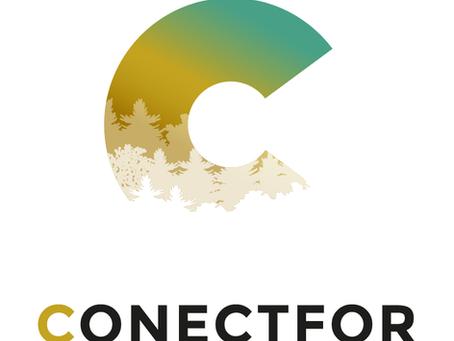 Les FHVE un enjeu fort pour la forêt Pyrénéenne : Zoom sur CONECTFOR !
