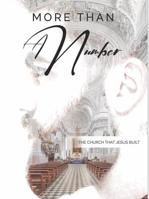 More Than A Number: PDF