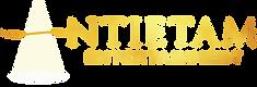 AE - Logo4.png