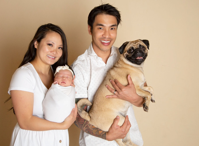 bruno family pug