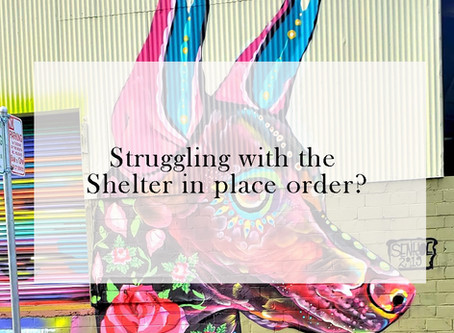 Struggling with the Shelter in place order?