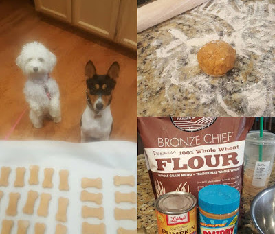 Pumpkin Peanut Butter Dog Treats