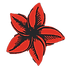 Red_Flower_BlackBG_edited_edited.png