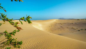 The Magical Dunes of Fuerteventura