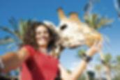 Fuerteventura - Oasis Park Zoo