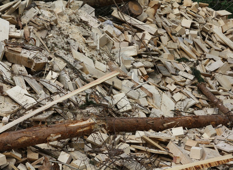 Wood Biomass Fuel is Carbon-Neutral…Oh, Really?