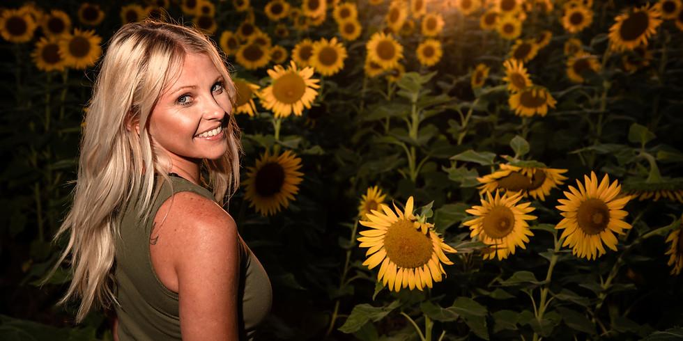 Sunflower Shoot at Sunset