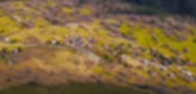 Hameau pour site.jpg
