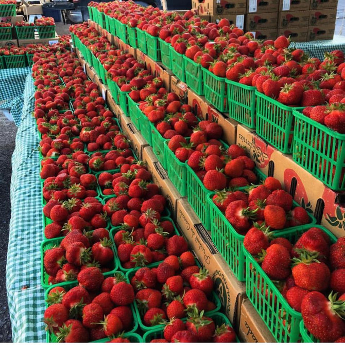 Pick Your Own Berries at McLean's