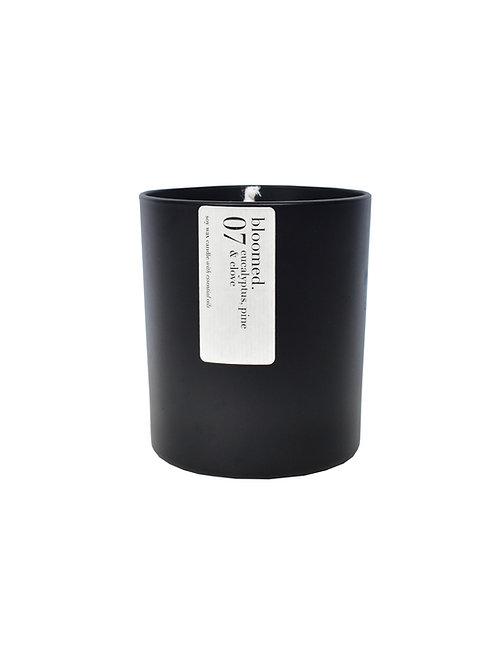 07 eucalyptus, pine & clove soy wax candle