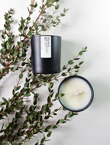 eucalyptus-pine-clove-soy-wax-candle-fol