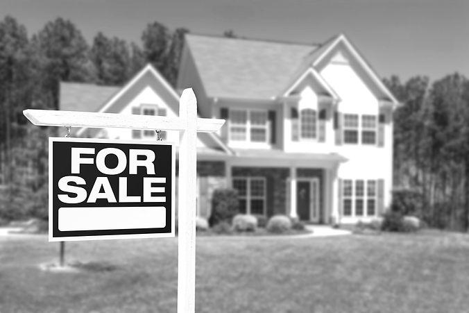 real estate_edited.jpg