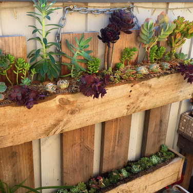 Upcycled Pallet Vertical Garden