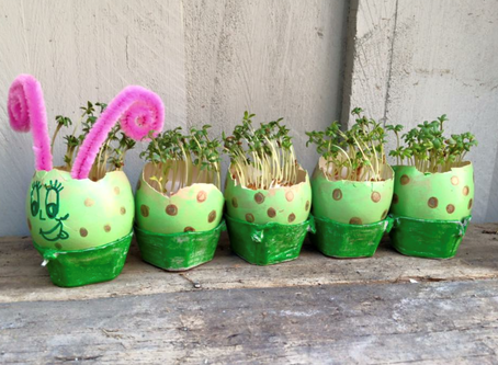 "School Holiday Kids Craft Project  ""Grow your own caterpillar with egg shells"""