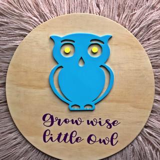 Owl Round