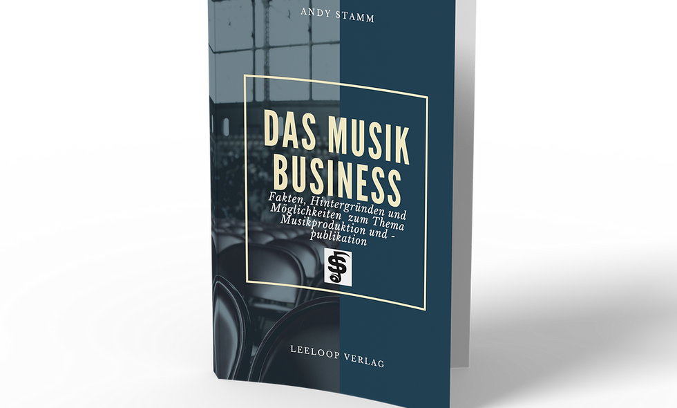 Das Musikbusiness e-Book          (376 Seiten)