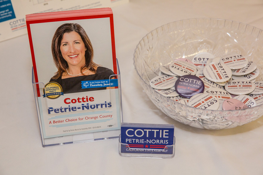 Political fundraiser Cottie Petrie-Norris for State 74th Assembly 2018