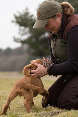 Puppy Gundog Classes