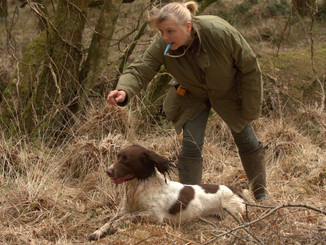 ***Corbinsbere Gundogs Workshops***