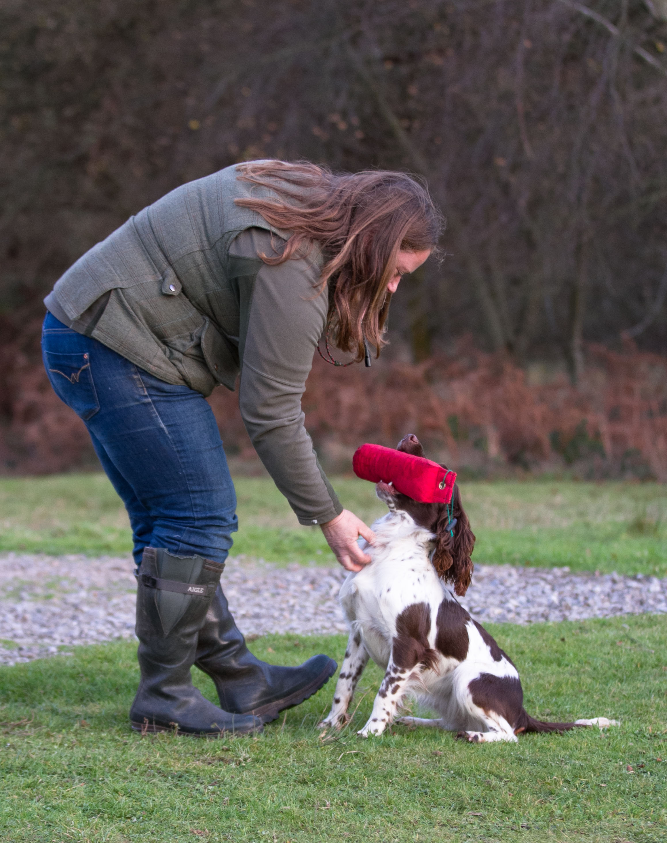 One to One Gundog training