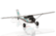 Cessna_172SPBushTW_icon11.png