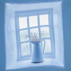 Blue Vase_1.jpg