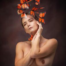 Papillon_1.jpg