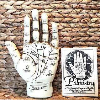 palmistry-hand.jpg