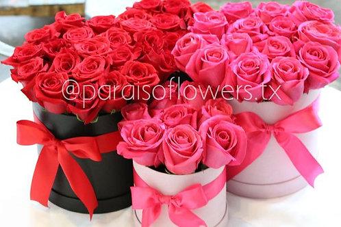 Roses- 2 Dozen