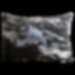 13x19 Cushion Cushion.png