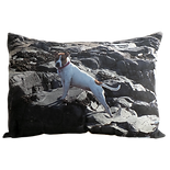 13x19 Cushion Cushion.png