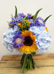 Including Scabiosa, Sunflowers, Veronica, Rosemary and Hydrangea.