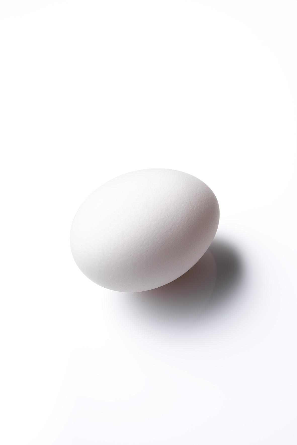 160226_TokyoCalender_Brozer's_Egg