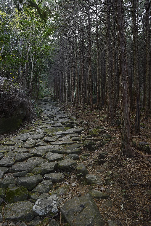 Mie_Kumanokodou_1