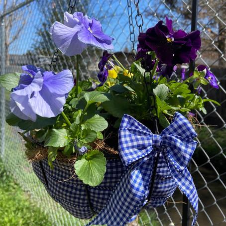Flower Basket Makeover