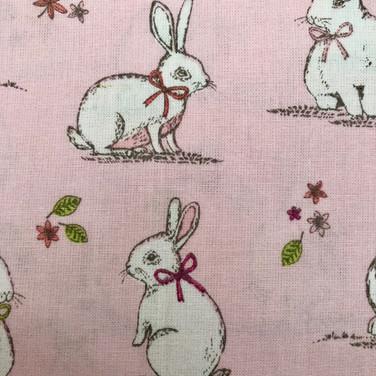 14 Pink Rabbits