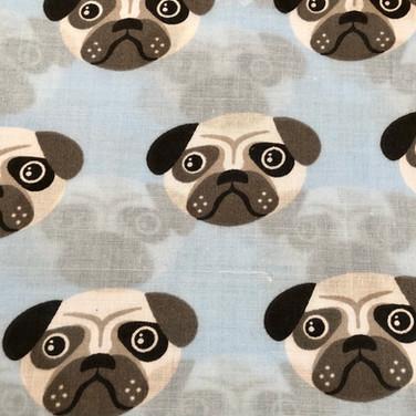 20 Blue Pugs