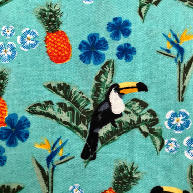 29 Toucans and Pineapples
