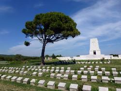 1 Day Tour - Gallipoli