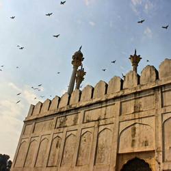 The Delhi Fort #india #delhi #nofilter.j