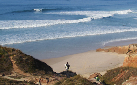 Surf Guiding 3.jpg