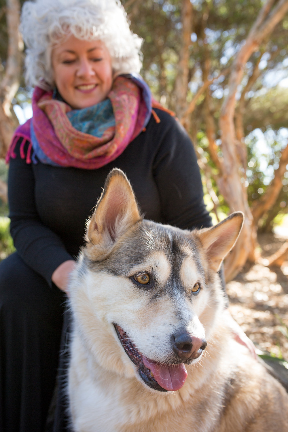 A picture of Dr Annetta Mallon and her dog Cully sitting outside under a tree. Annetta is a woman with white curly hair, a colourful scarf around her neck and a big smile. Cully is an incredibly handsome Malamute X Shepherd dog. Both look very happy.