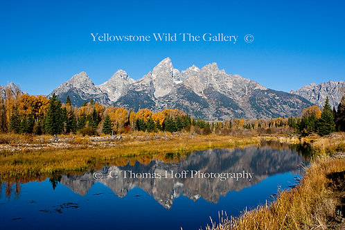 THE TETONS GRAND REFLECTIONS