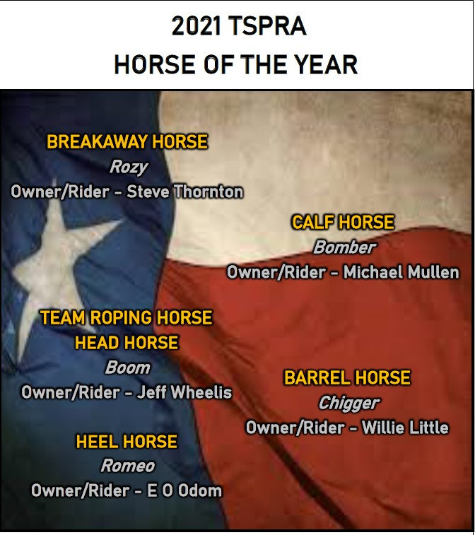 Horse of the Year.jpg
