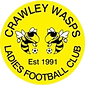 Crawley Wasps_0.png