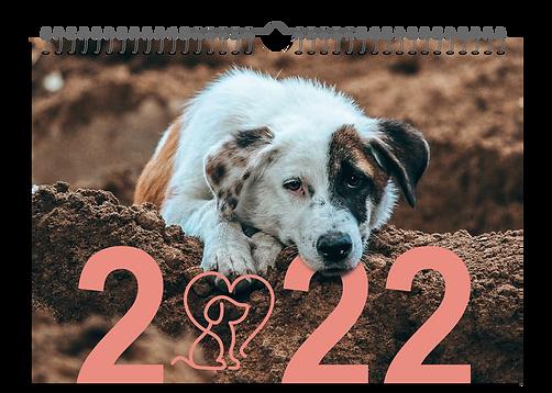 Fellhelden-Monatswandkalender-Website.png