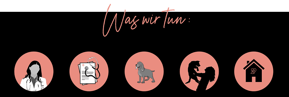Website_Waswirtun_PZ.png