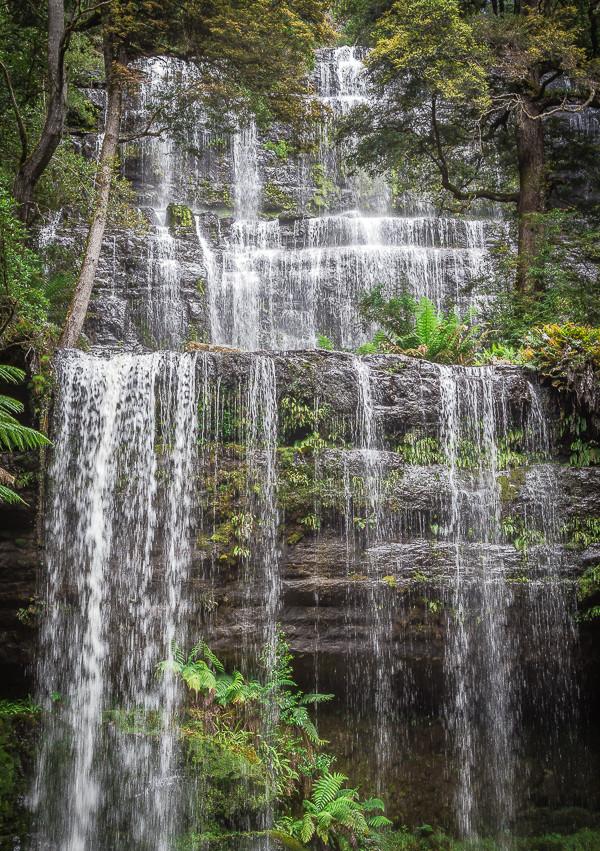 Водопад Расселл (Russell Falls). Здесь видно, что он намного больше, чем кажется на предыдущем снимке, сделанном широкоугольным объективом чтобы показать водопад в окружающей среде.